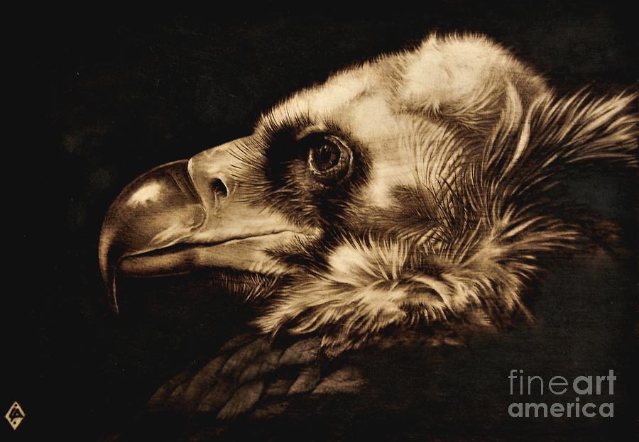 Avvoltoio Pyrography - Avvoltoio by Ilaria Andreucci