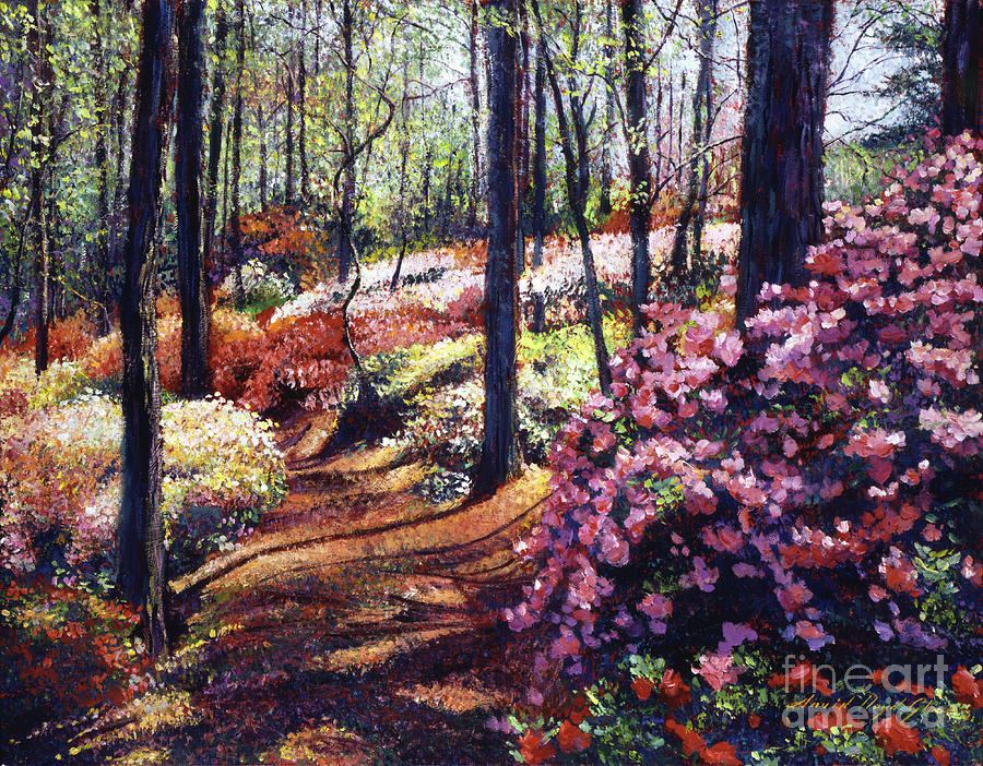 Azaleas Painting - Azalea Forest by David Lloyd Glover