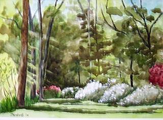 Sunlight Painting - Azalea Garden by Bob Herbert