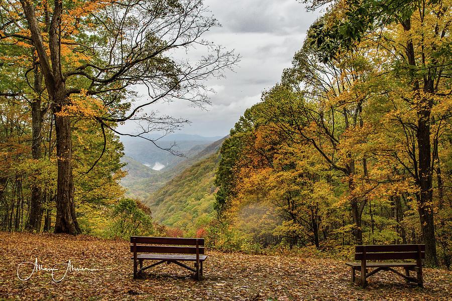 Babcock State Park Overlook by Allen Ahner