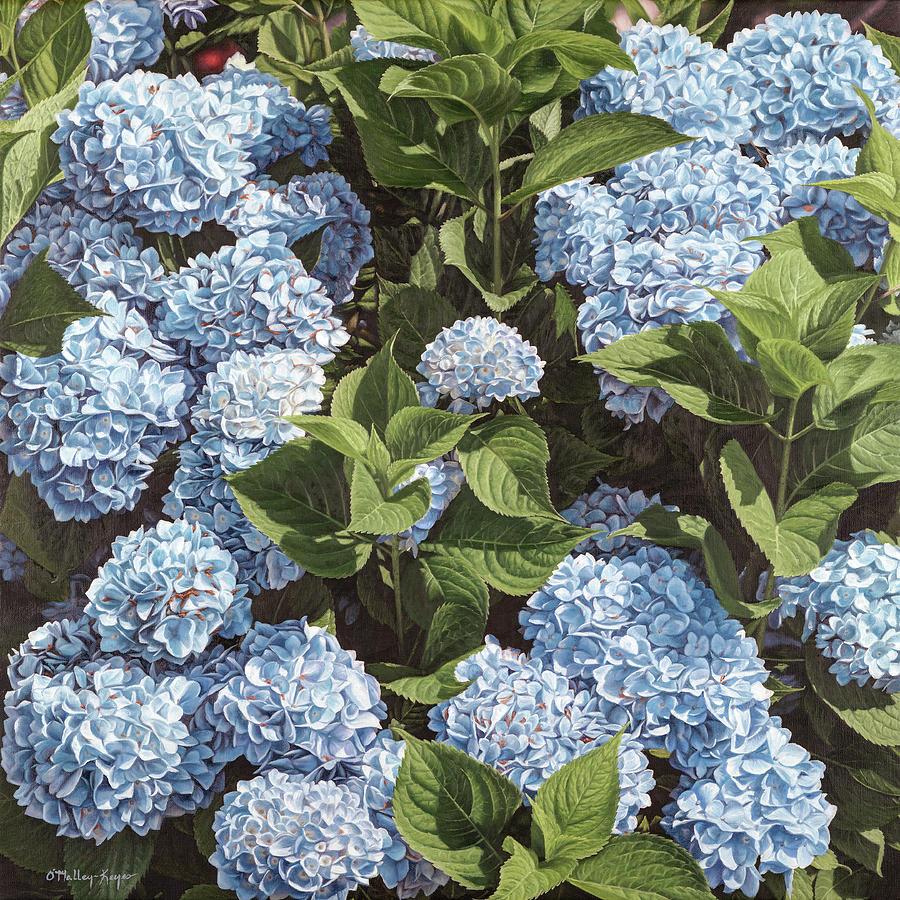 Hydrangeas Painting - Baby Blues by Julia OMalley-Keyes