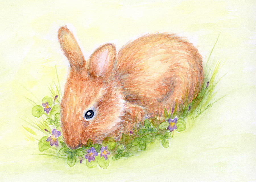 Baby Bunny in Watercolor by Elizabeth Oertel