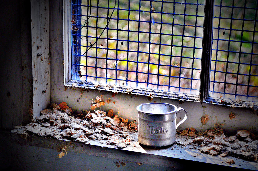 Cup Photograph - Baby Cup by Emily Stauring