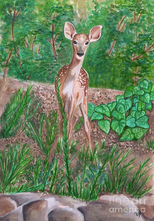 Baby Deer by Patty Vicknair