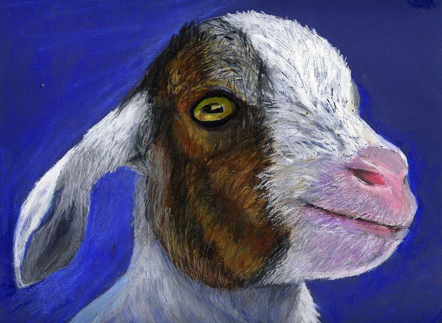 Goat Pastel - Baby Goat by Angela Finney