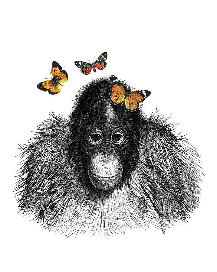 Monkey Digital Art - Baby Monkey With Orange Butterflies by Madame Memento