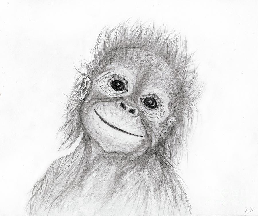 Baby orangutan Drawing by Sergey Lukashin