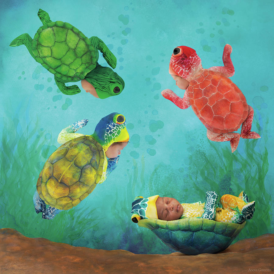 Under The Sea Photograph - Baby Turtles by Anne Geddes