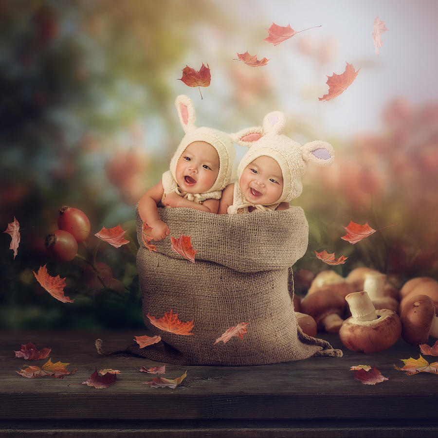 Babies Photograph - Baby Twins by Cindy Grundsten