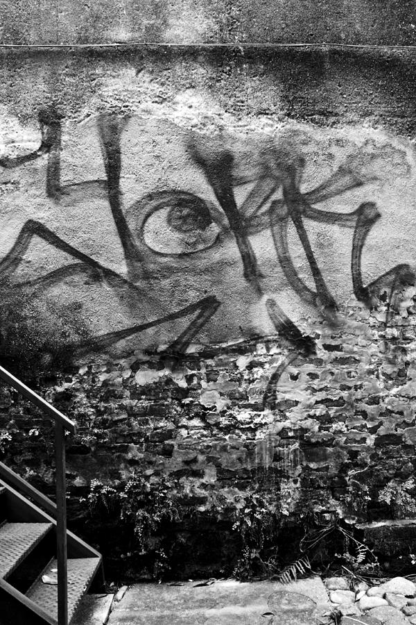 Back Alley Graffiti  Photograph by Dustin K Ryan