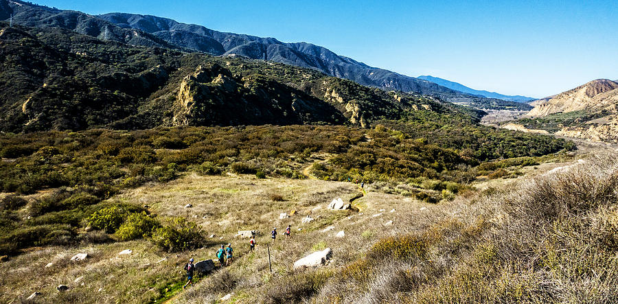 Athletics Photograph - Back Country Runners by Bryan Toro