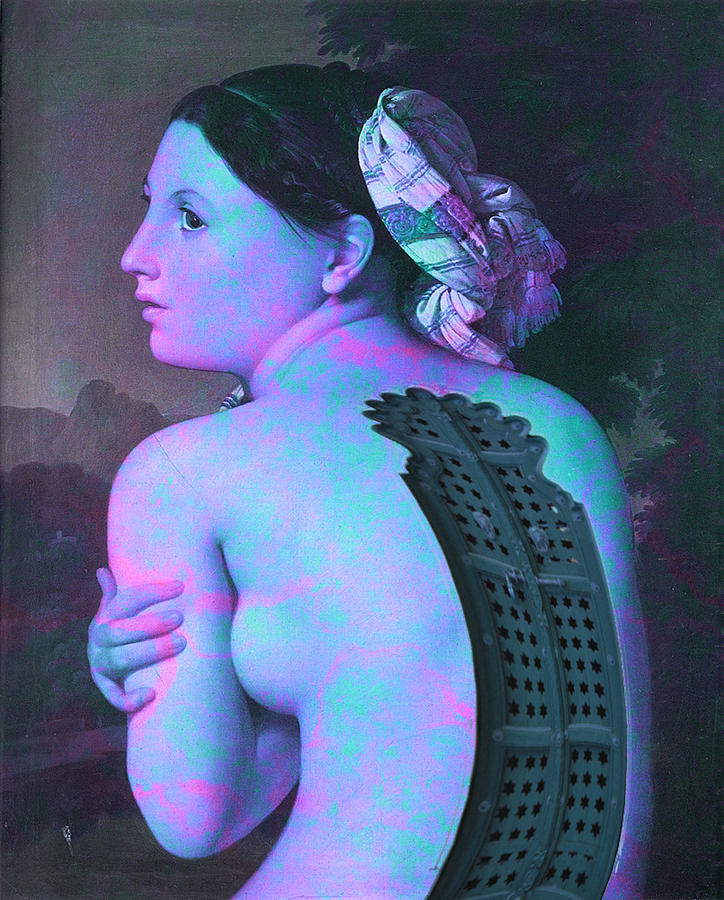 Back Door Digital Art by Vonitya Anand