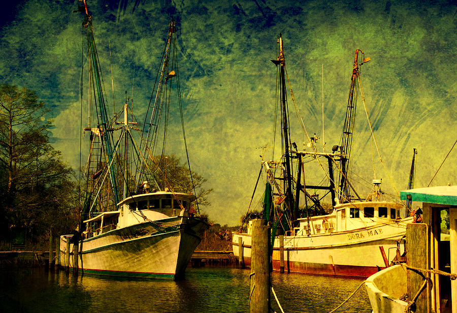 Harbor Photograph - Back Home In The Harbor by Susanne Van Hulst