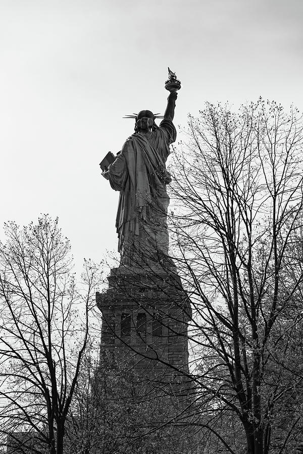 Back in Black Statue of Liberty by Art Atkins