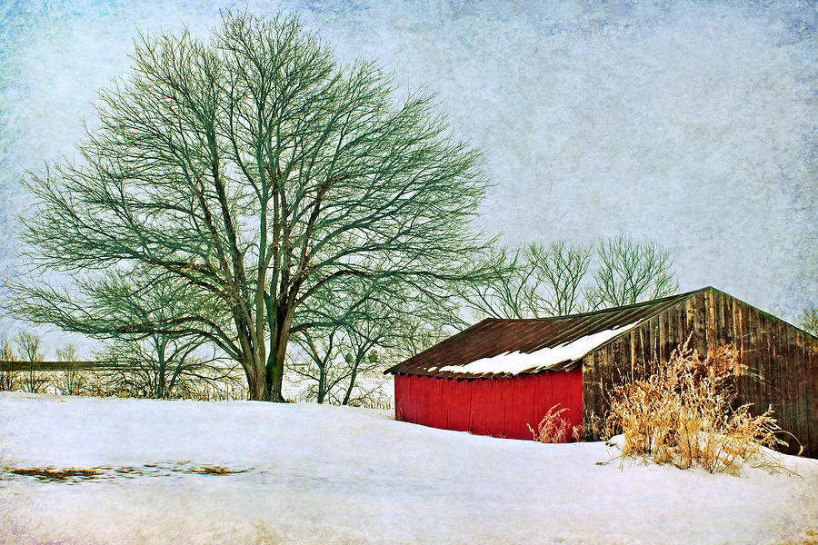 Red Barn Photograph - Back In The Day by Nikolyn McDonald