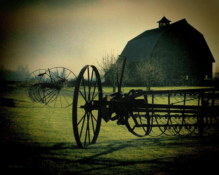 Farm Photograph - Back On The Farm by DMSprouse Art