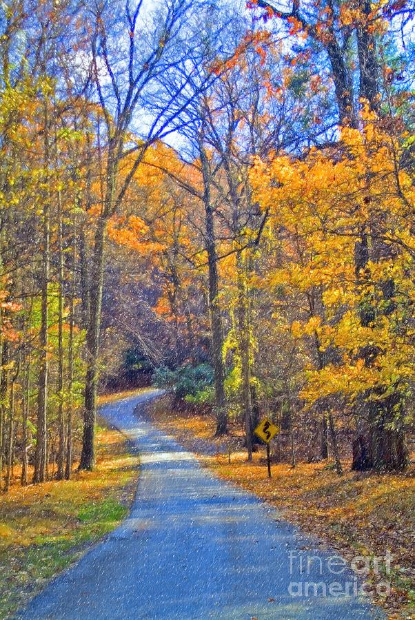 Back Road Fall Foliage Photograph by David Zanzinger