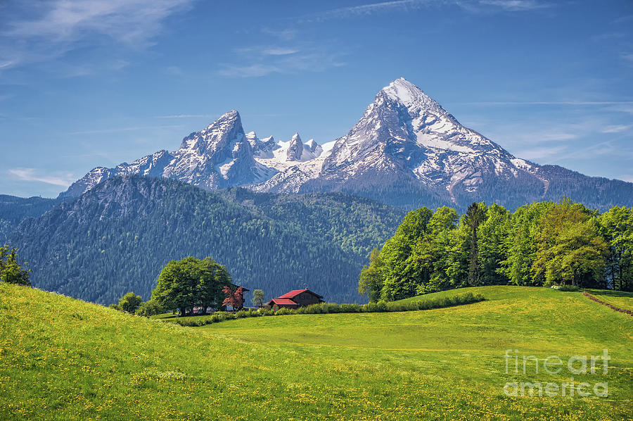 Alpen Photograph - Back To The Roots by JR Photography