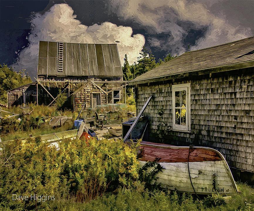 Back Yard Photograph - Back Yard, Stonington, Maine by Dave Higgins