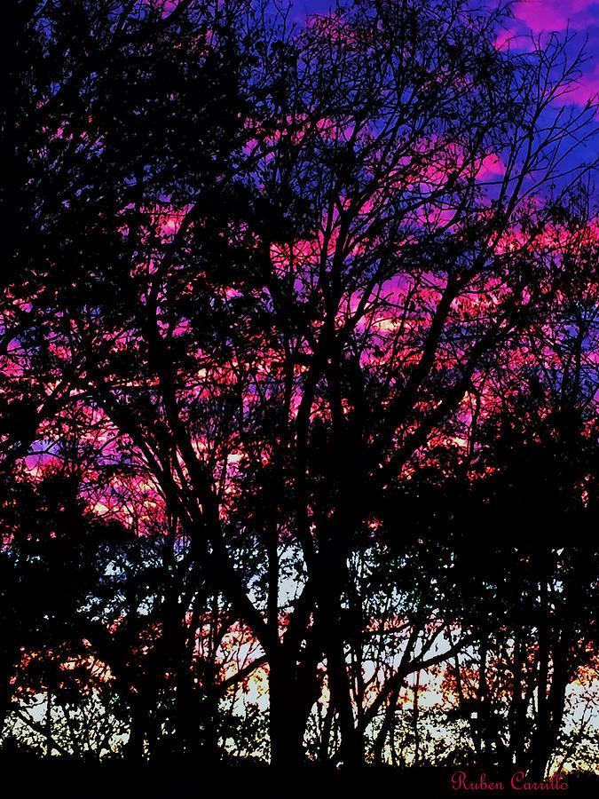 Back Yard Sunset by Ruben Carrillo