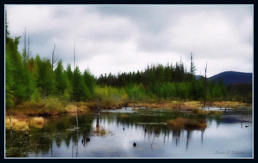 Adirondack Mountains Painting - Backcountry Lake - Adirondacks by Linda Seifried