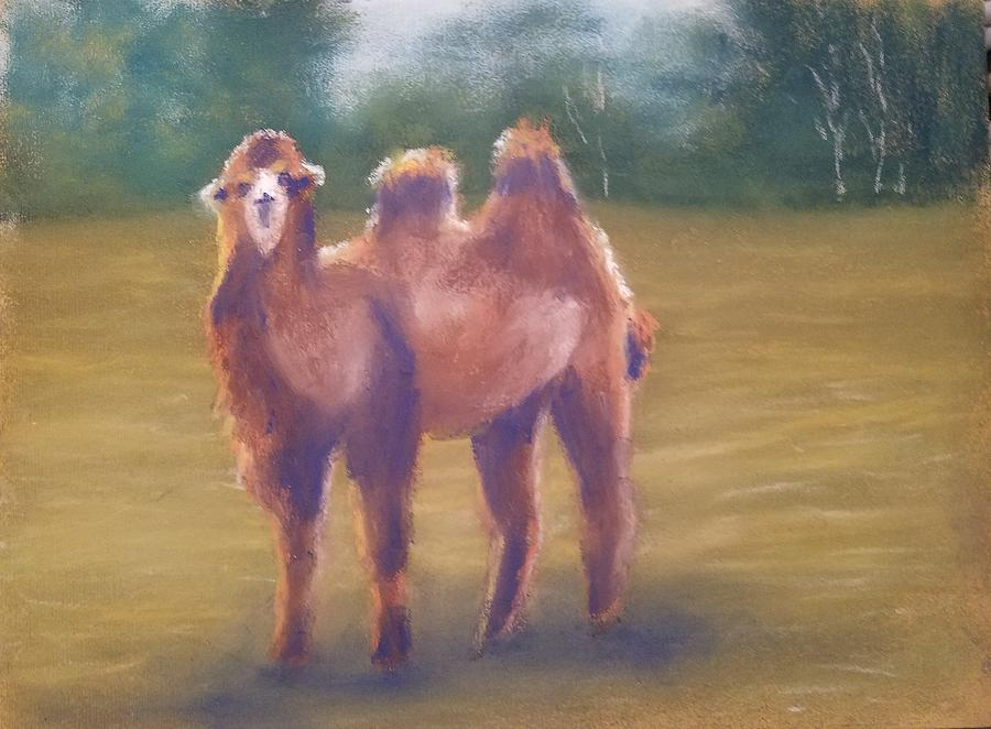 Camel Painting - Backlit Bactrian by Sharon E Allen