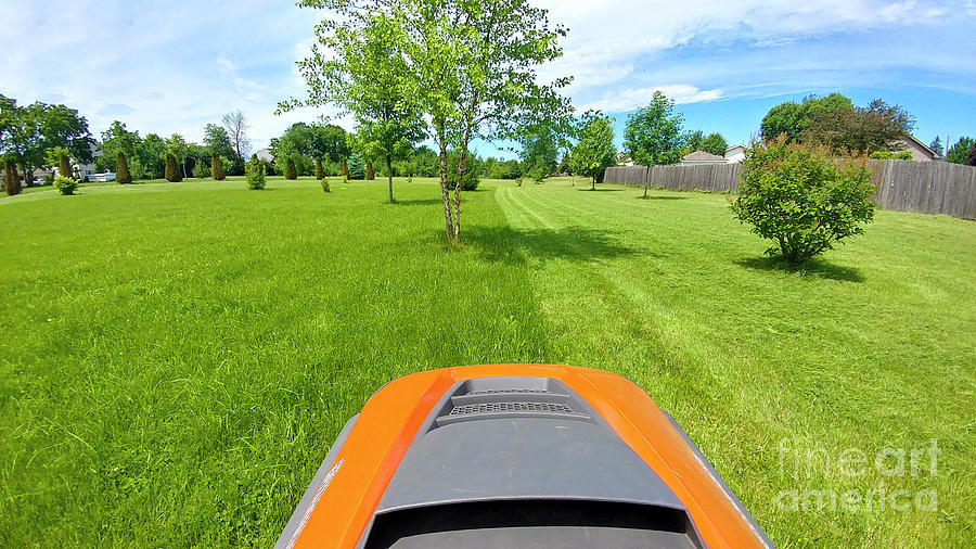 Backyard Photograph - Backyard Mowing by Ricky L Jones