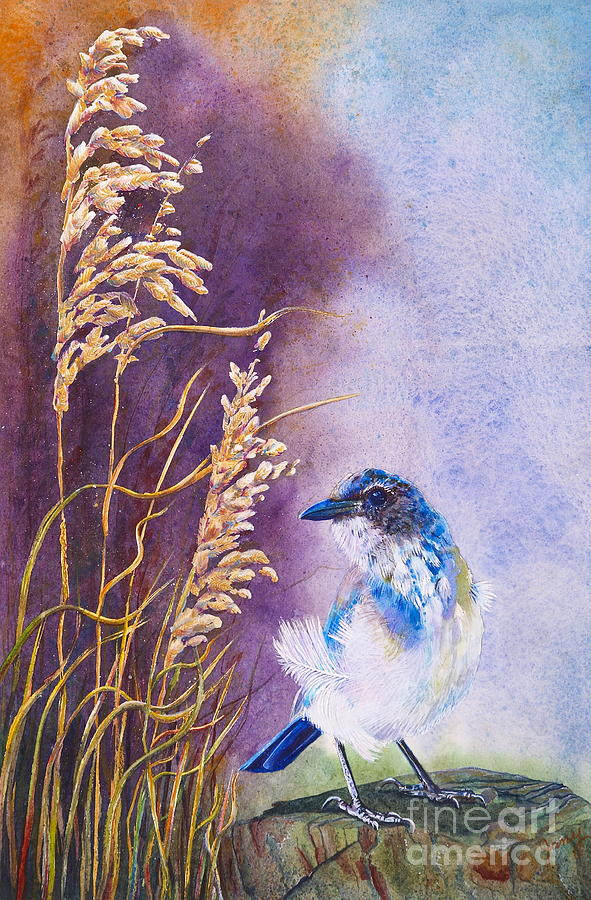 Scrub Jay Painting - Bad Feather Day by Jany Schindler