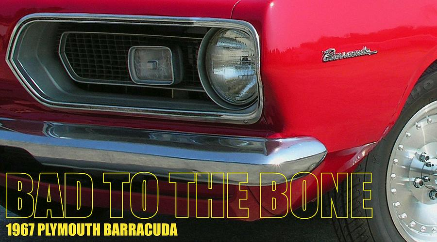Barracuda Photograph - Bad To The Bone by Richard Rizzo