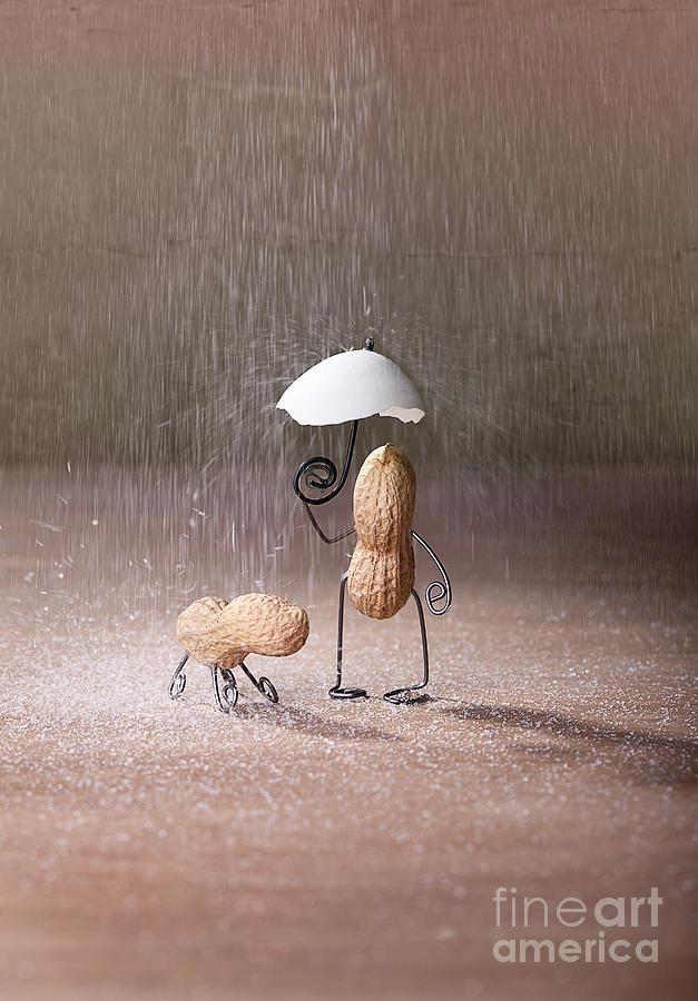 Peanut Photograph - Bad Weather 02 by Nailia Schwarz