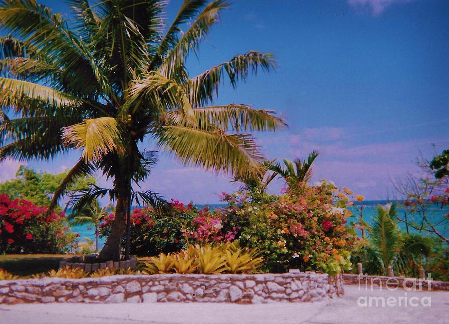 Bahamas 2 Photograph