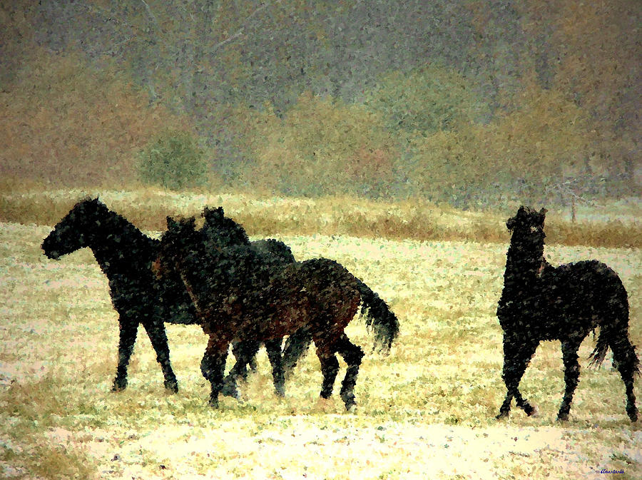 Bailando De Los Caballos En Viento Y Nieve Photograph by Anastasia Savage Ealy