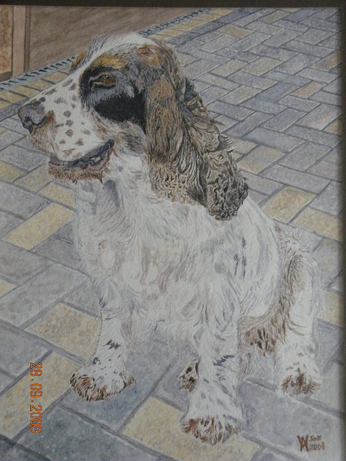 Bailey Painting by Alan Webb