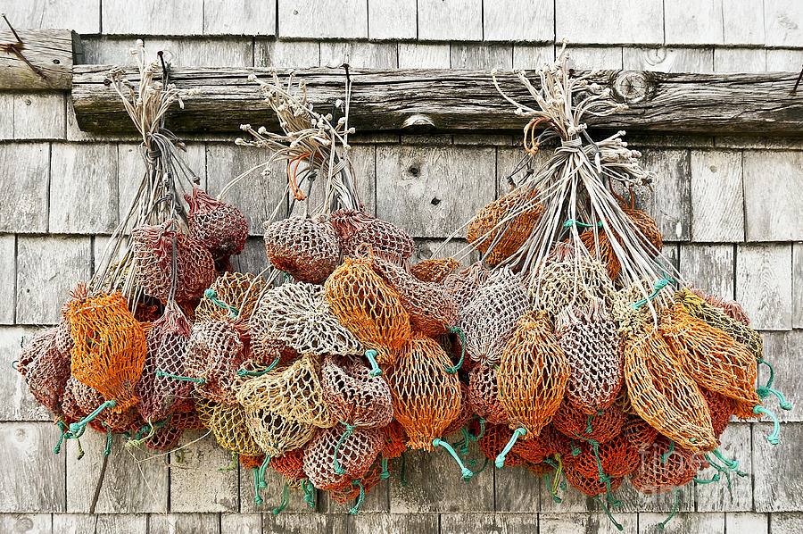 Maine Photograph - Bait Bags by John Greim