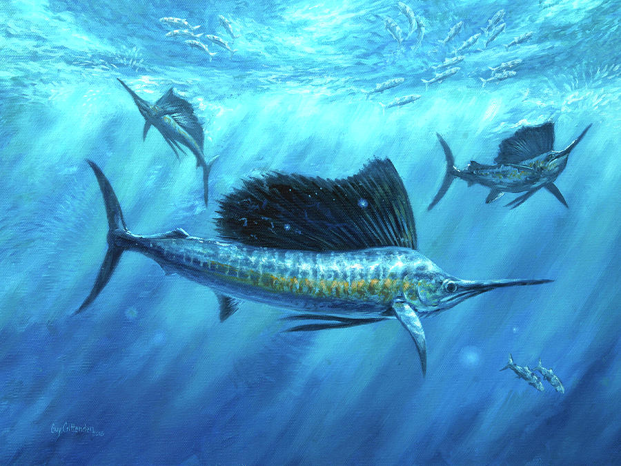 Sailfish Paintings Painting - Bait Bash by Guy Crittenden