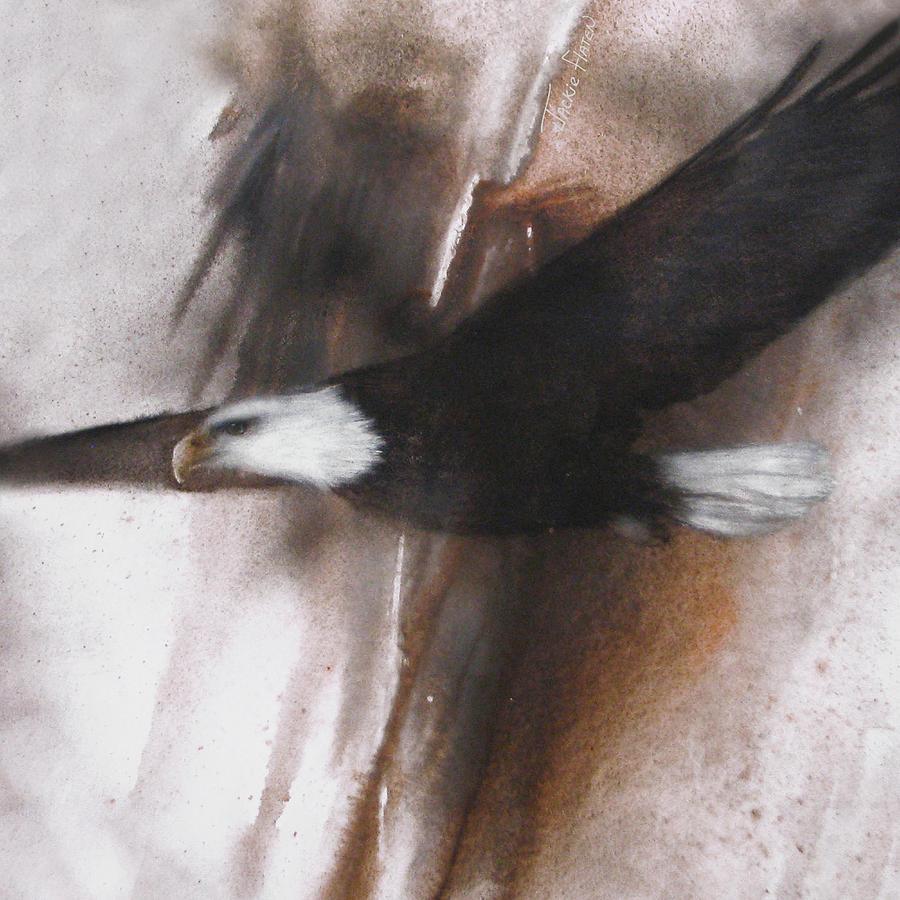 Bald Eagle Flight by Jackie Flaten