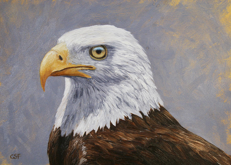 Bird Painting - Bald Eagle Portrait by Crista Forest