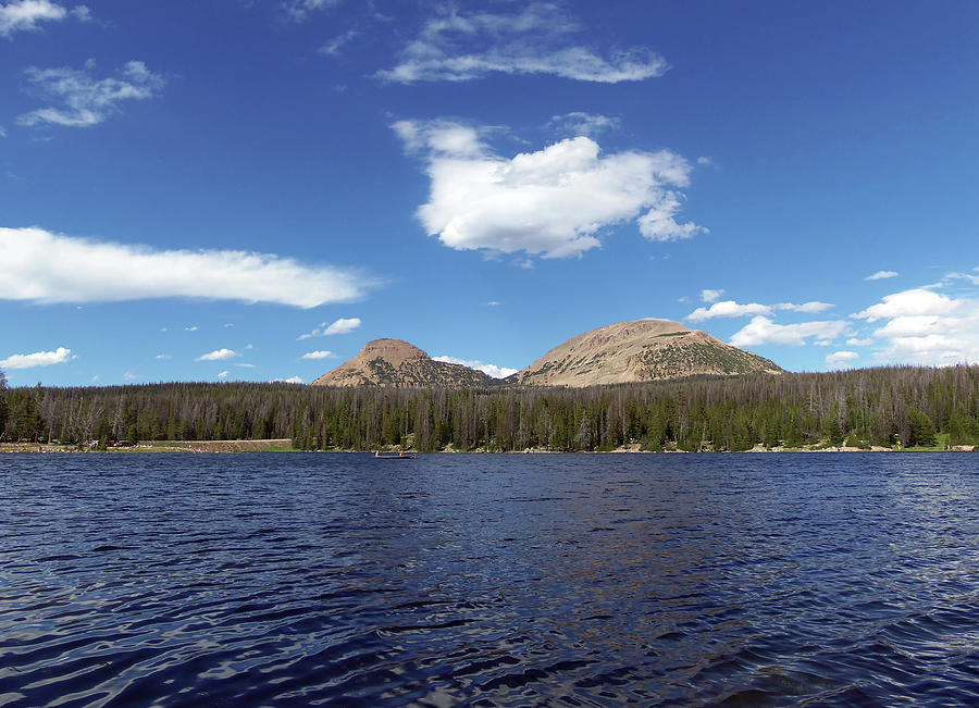 Bald Mountain Photograph - Bald Mountain by Julie Tanner