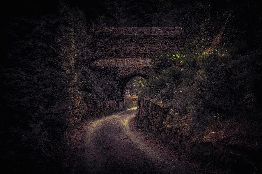 Burg Photograph - Balduinstein Castle_gateway by Hans Zimmer