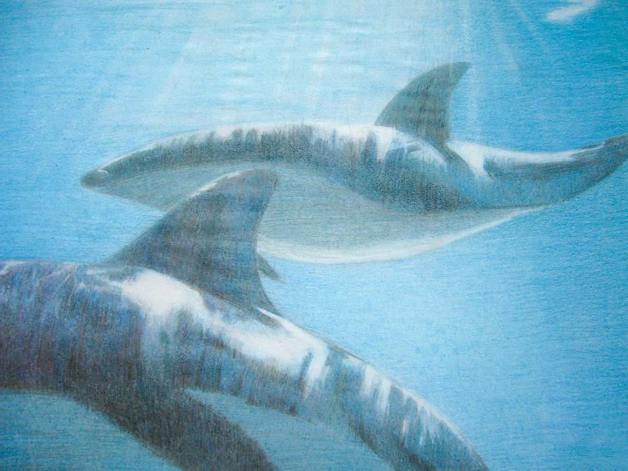 Whales Drawing - Baleias - Whales by Fabio Turini