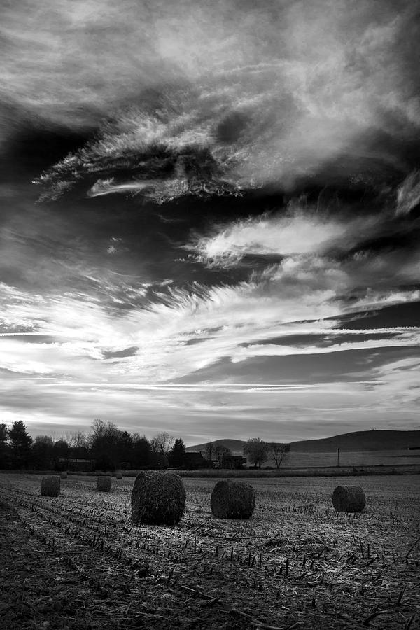 Hay Bales Photograph - Bales by C K Mackie
