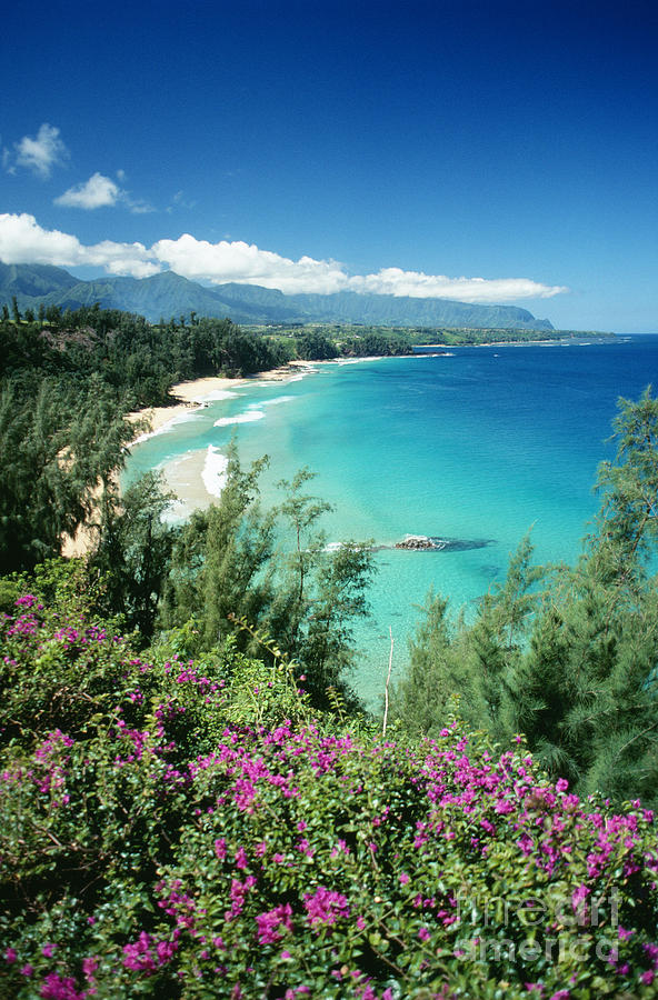 Afternoon Photograph - Bali Hai Beach by Dana Edmunds - Printscapes