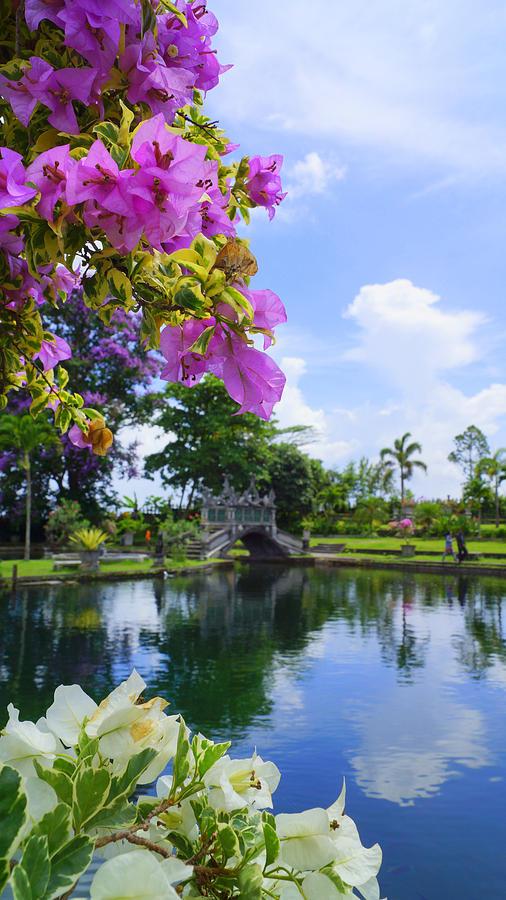 Bali Reflections Photograph by Todd Hummel