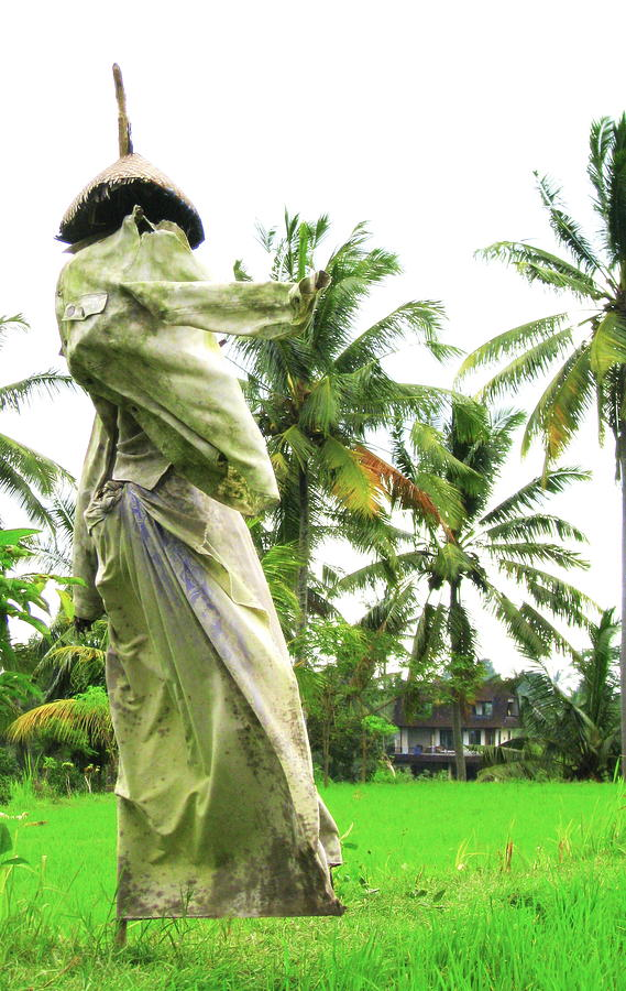 Scarecrow Photograph - Bali Scarecrow by Jane Buck