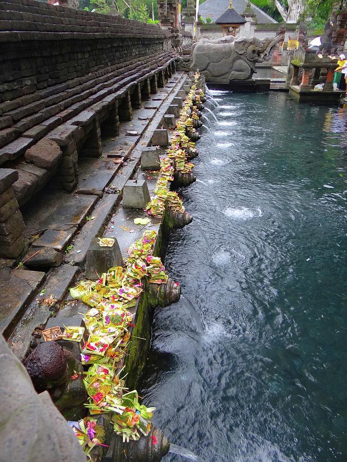 Unschooling Photograph - Bali Temple Offerings by Exploramum Exploramum