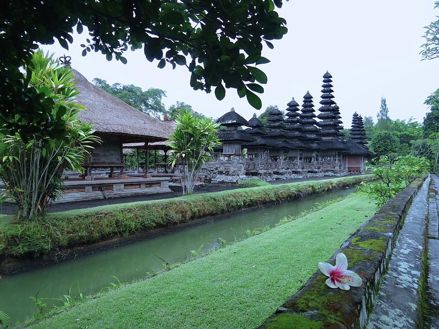 Unschooling Photograph - Balinese Temple with flower by Exploramum Exploramum