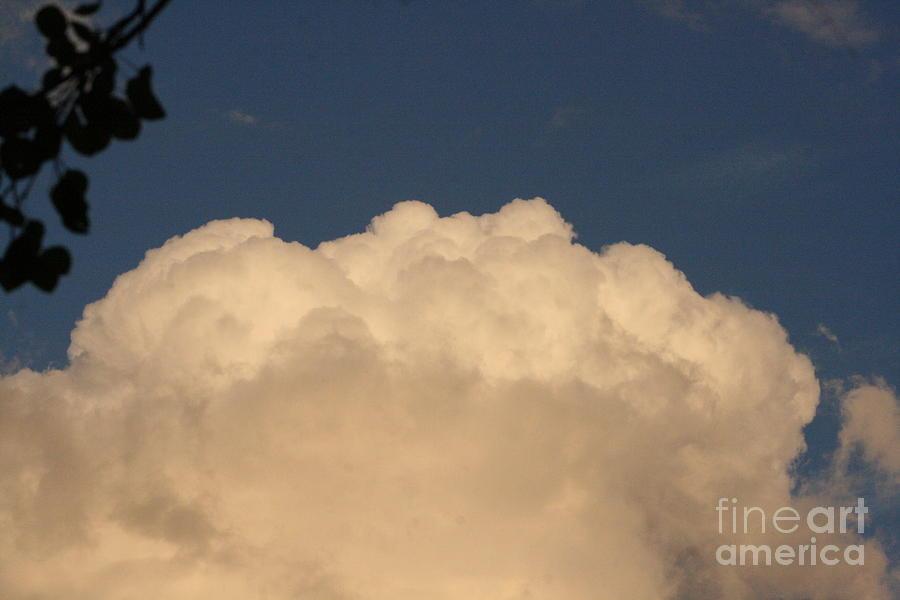 Balloon Photograph - Balloon Cloud by Mary Mikawoz