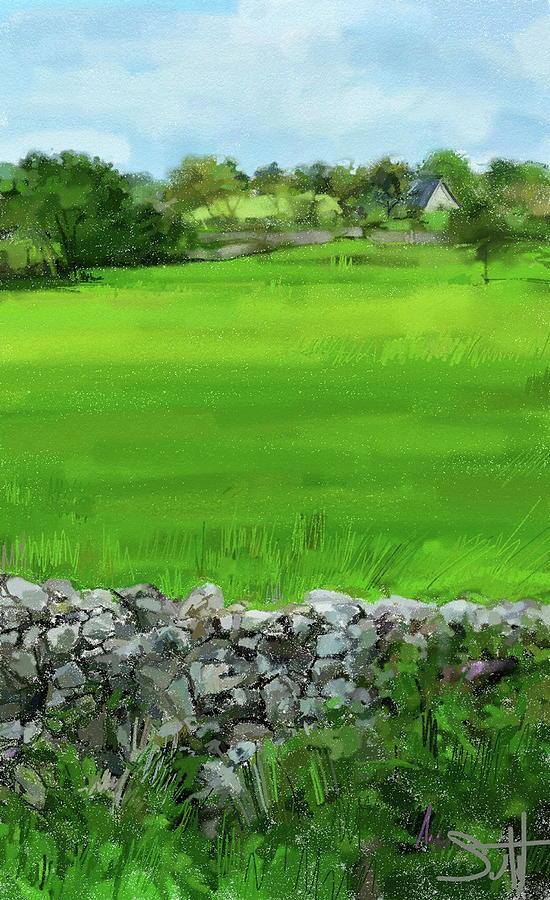 Ballyvaughn Fields Digital Art by Scott Waters