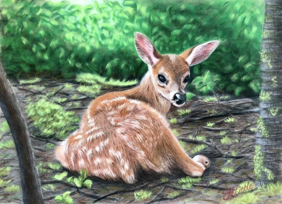 Bambi? by Marlene Little
