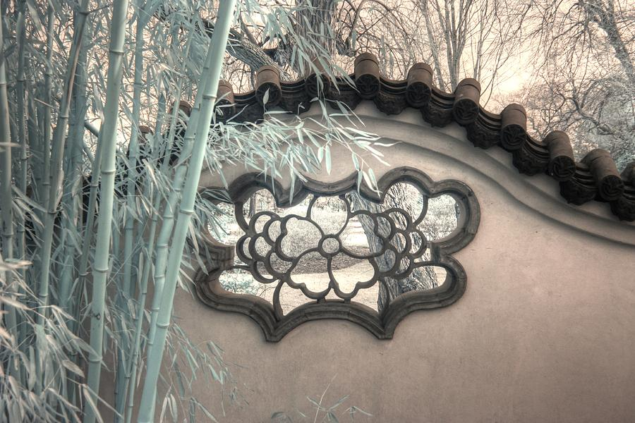 Bamboo wall Chinese garden infrared zen by Jane Linders